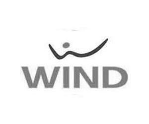 Wind - Villa Castelbarco, eventi aziendali Milano, sala congressi, sala conferenze.