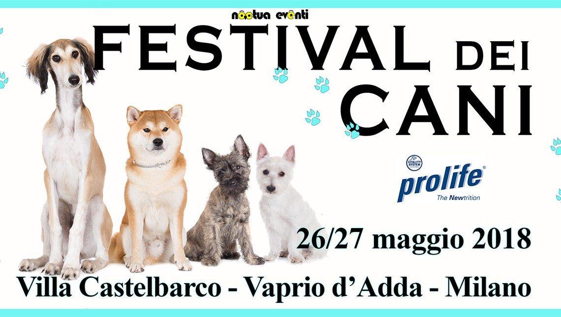 Festival dei cani