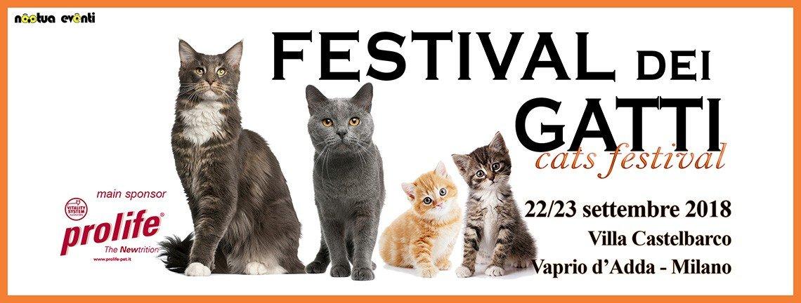 festival dei gatti location mostre milano