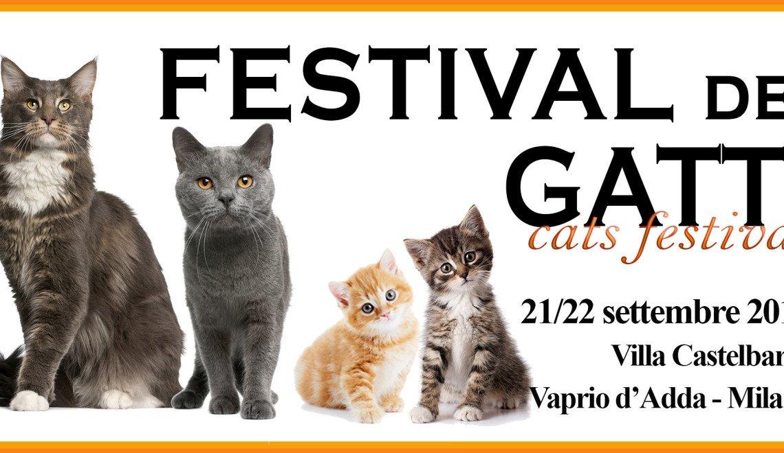festival dei gatti 2019