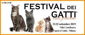 copertina FB gattino prolife