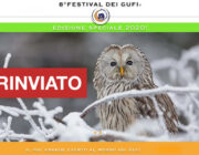 Festival dei Gufi - RINVIATO AD AUTUNNO
